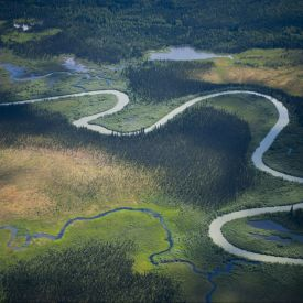 aerial view of forests and rivers. stunning greens and blues. wild. british columbia