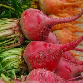 a pile of bright red and orange beets at a farmers market