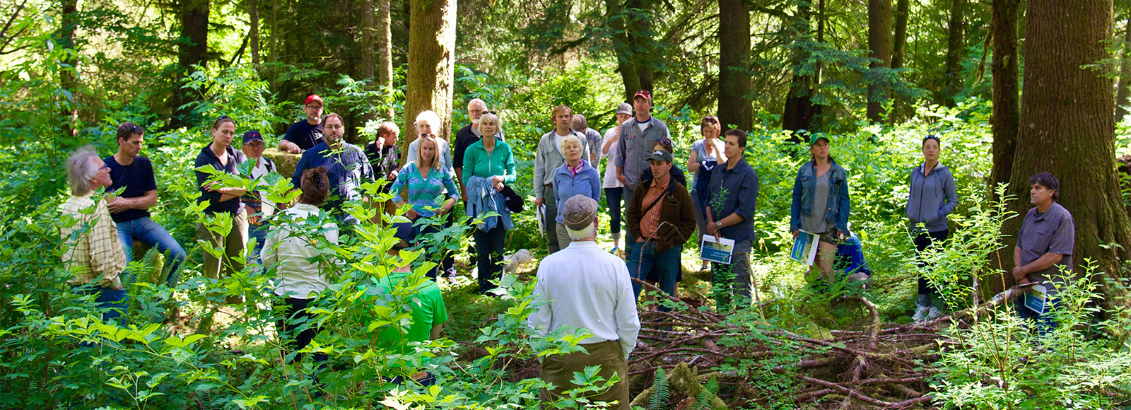 large group of men and women standing in a deep green forest talking