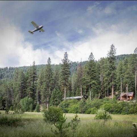 Against a blue sky and white clouds, a small propeller airplane flies low, but at an upward trajectory, over an open field of small trees, edged by a taller forest.