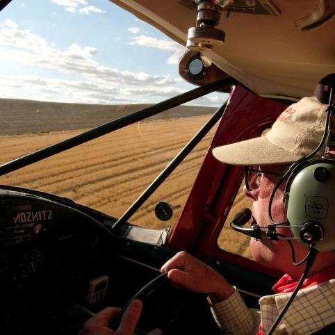 man in baseball hat flying airplane over wheat fields