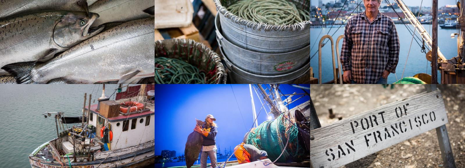 grid of fishing photos - fishermen, ropes, fish