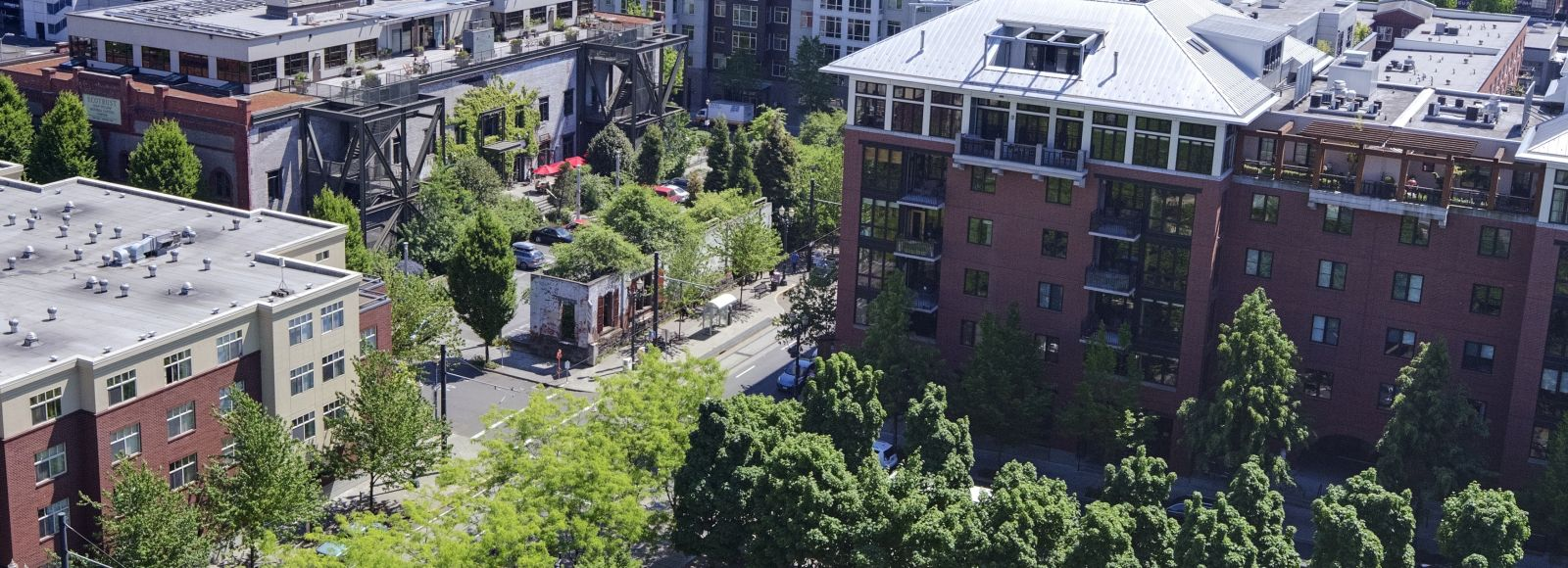aerial shot of a green city scape, portland OR