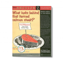 Publication, Section Z Issue #1, What lurks behind that farmed salmon steak