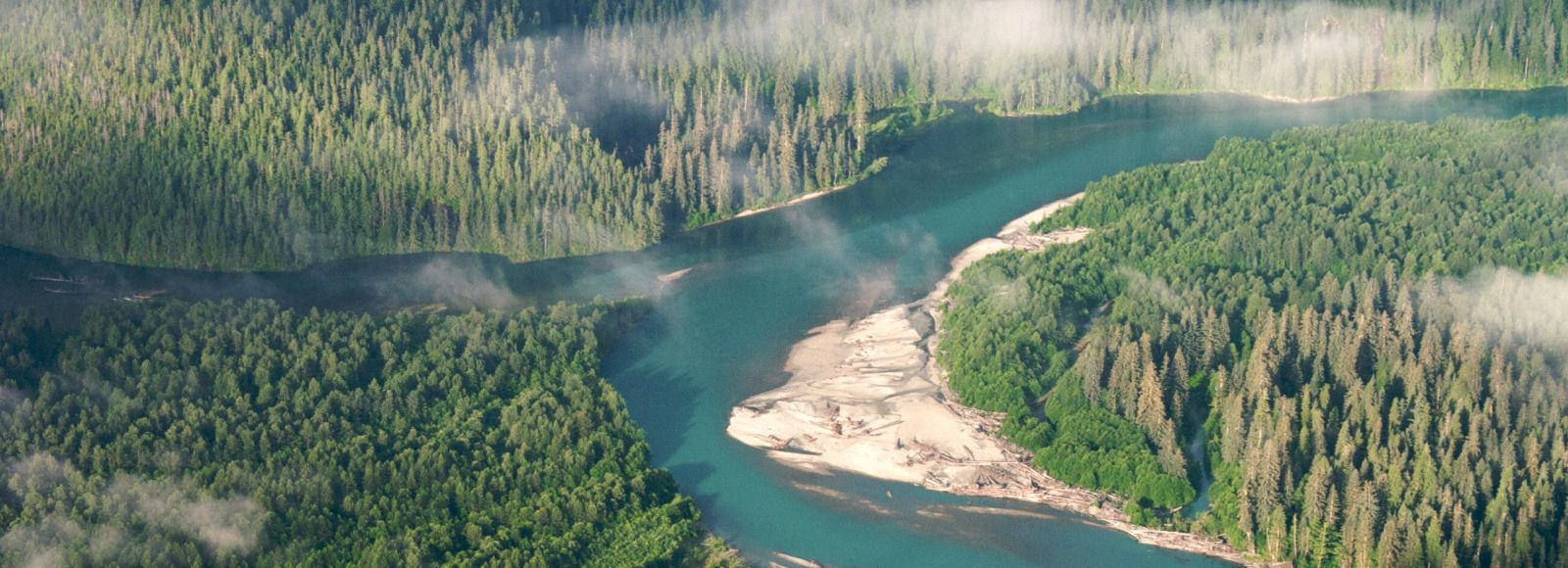 aerial of two pristine rivers coming together, Kitlope and Gamsby confluence