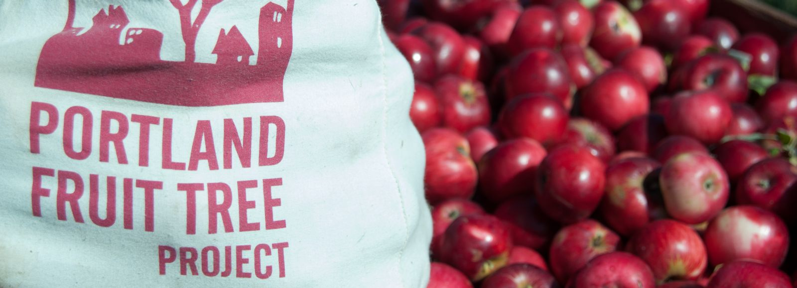 Portland Fruit Tree Project canvas bag next to a barrel of apples