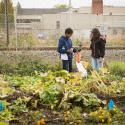 two students stand in a garden bagging a zucchini