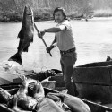Billy Frank, Jr. hauling salmon into a crate from a river boat
