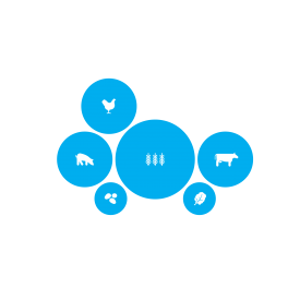 illustrations of six agricultural products in bright blue circles