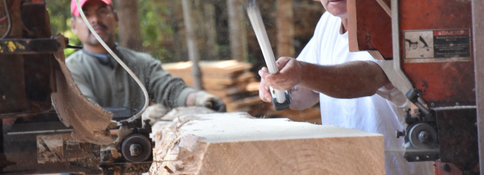 Two men operate an orange handmill, passing a log through to make slabs of wood.