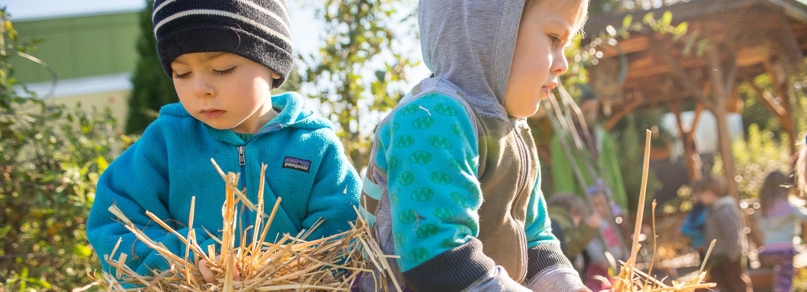 Two preschool students hold handfuls of straw, as if moving them to a new spot in the garden to be used as mulch.