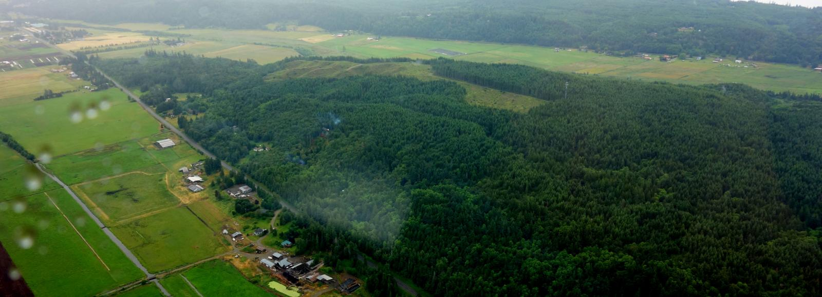 aerial view of chimacum ridge and farms - green
