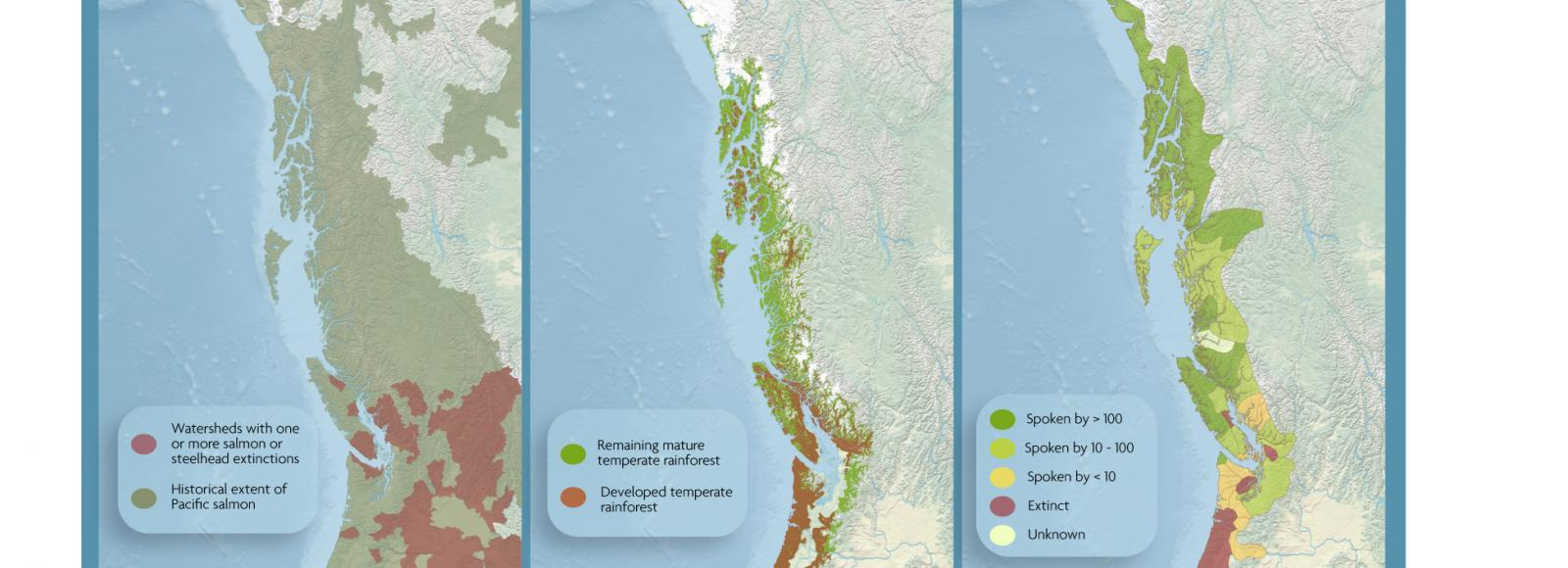 Three side by side maps showing the decline of salmon, forests, and languages in the Pacific Northwest.
