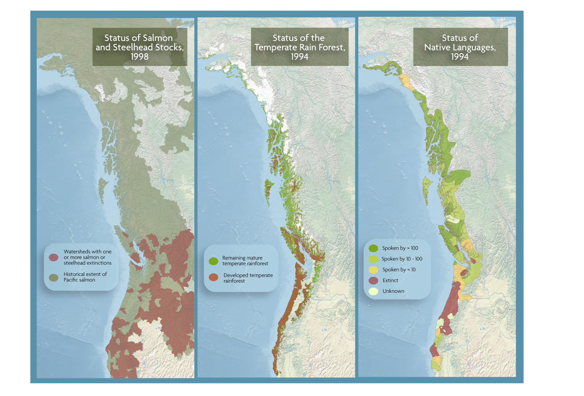 1998—People, Forests, Salmon:  Placing Ecotrust's maps of native language loss, forest cover loss and salmon species loss shows an unmistakable pattern of interconnectedness between humans and ecosystems.  In 1998, we also created the first-ever comprehensive view of North Pacific salmon stocks brought together data from a bevy of public agencies, and tracked salmon health across all of the region's medium-sized watersheds.