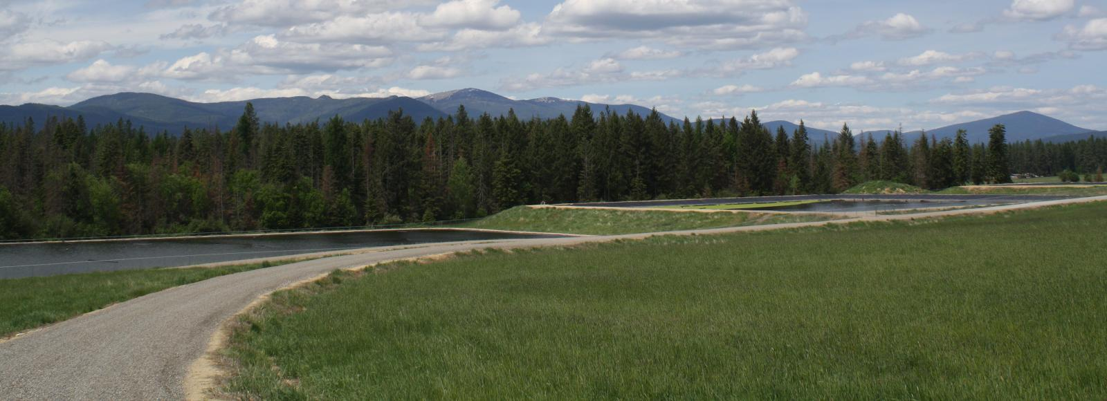 A gravel road winds through grassland. Two wastewater treatment pools are just beyond the far edge of the gravel road, with a stand of conifer trees in the back. Small mountains are in the distance.