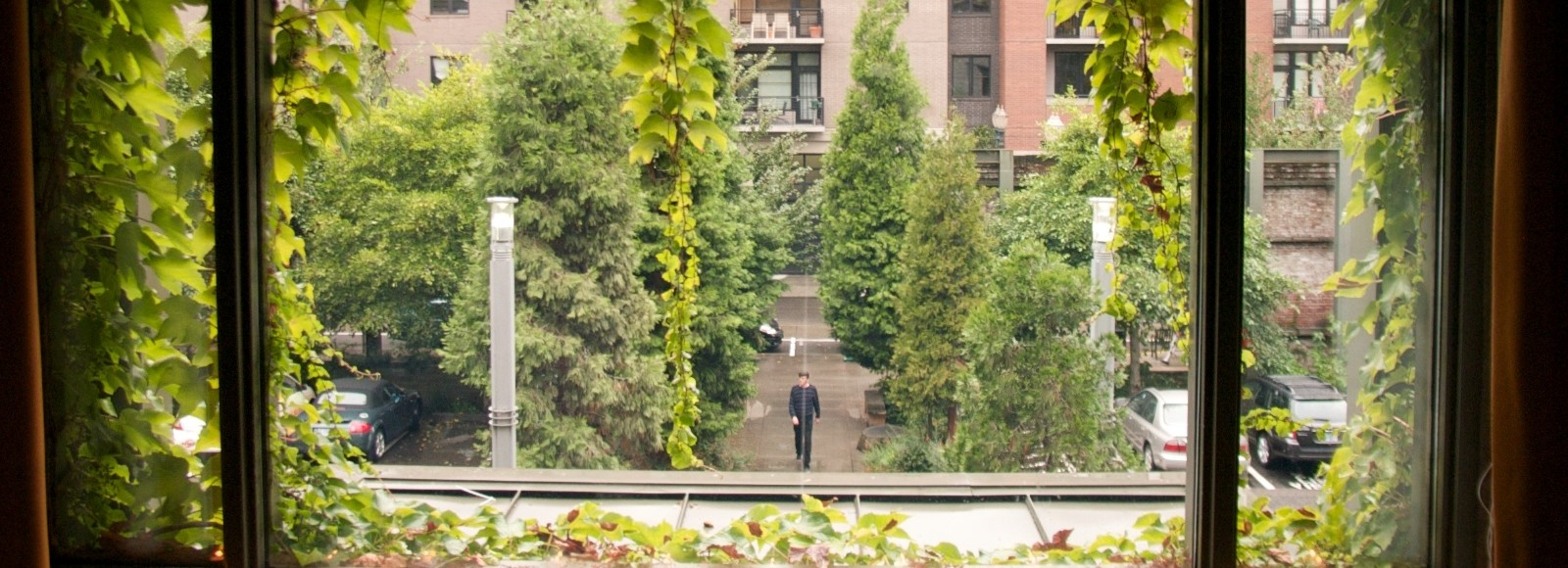 View through window of a person walking toward Natural Capital Center surrounded by green foliage