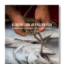 A close-up pair of hands ties a rope through the mouth of a caught salmon, beneath the superimposed text of an executive summary title.