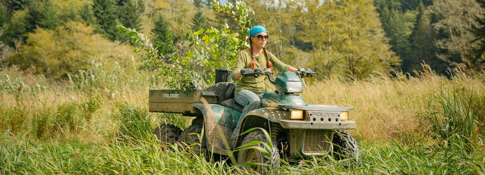 A woman in a blue bandana drives a four wheeler through tall grass with native plants in the back.