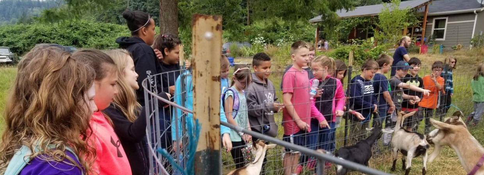 Group of kids stands near a fenced area looking at goats.