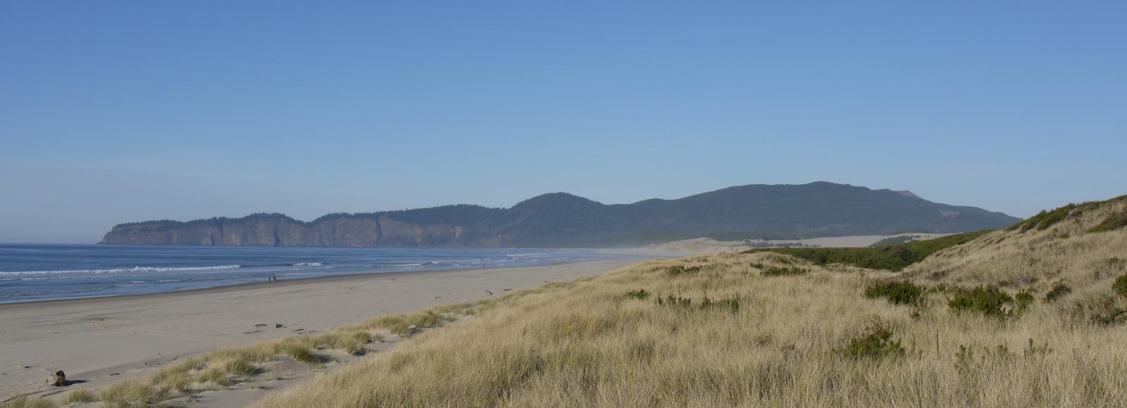 Sand Lake estuary. A yellow grassy hill in front of a beach. In the background are hills and cliffs.