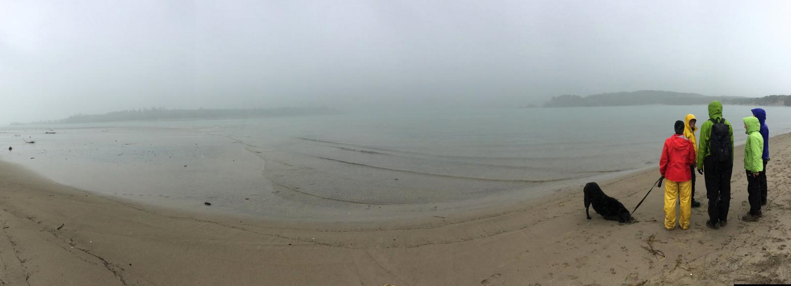 A panorama at the right of which stand six people and a dog looking out over a cloudy, possibly rainy, Sand Lake.