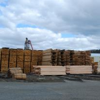 About 20 or so piles of lumber, some stacked at least a couple stories high, are in an outdoor dirt lot, with a glimpse of snowy mountains and trees in the background.