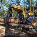 front loader collects felled trees in southern oregon forest