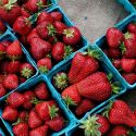 Pints of bright red strawberries at a farmers' market