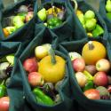 Bags of colorful fruits and vegetables
