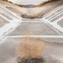 Tumble weed reflected in a puddle of water, resting inside a concrete irrigation channel in the Klamath.