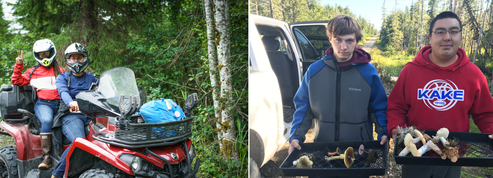 A diptych image. In the left side photo, a young woman drives an all-terrain vehicle, with a young woman in the passenger seat waving a peace sign with her hand. Their faces are mostly obscured by helmets. In the right image, two male youth face toward the camera carrying plastic trays of foraged mushrooms. They are next to a white truck.