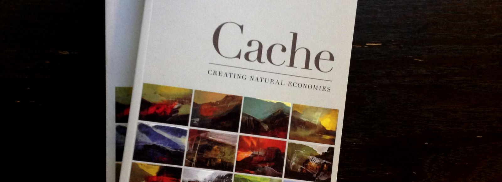 photo of a book from above, Cache by spencer Beebe