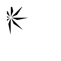 Charity Navigator 4 star charity seal
