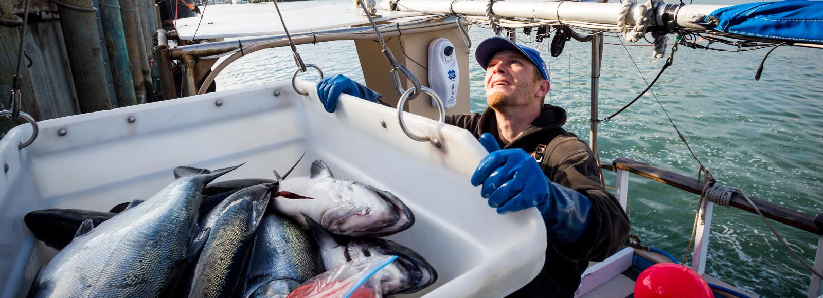 A fisherman, standing in a boat, holds a tub of fresh-caught fish that is suspended by wires. Rigging on his boat and open ocean can be seen behind him.