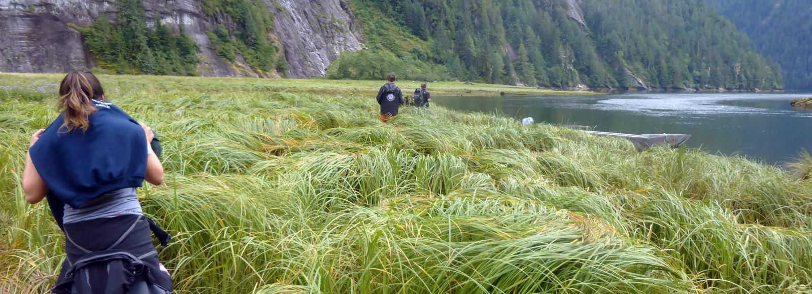 Four youth walk through tall grass. To the right of them is a wide river, ahead of them are steep, forested mountain slopes.