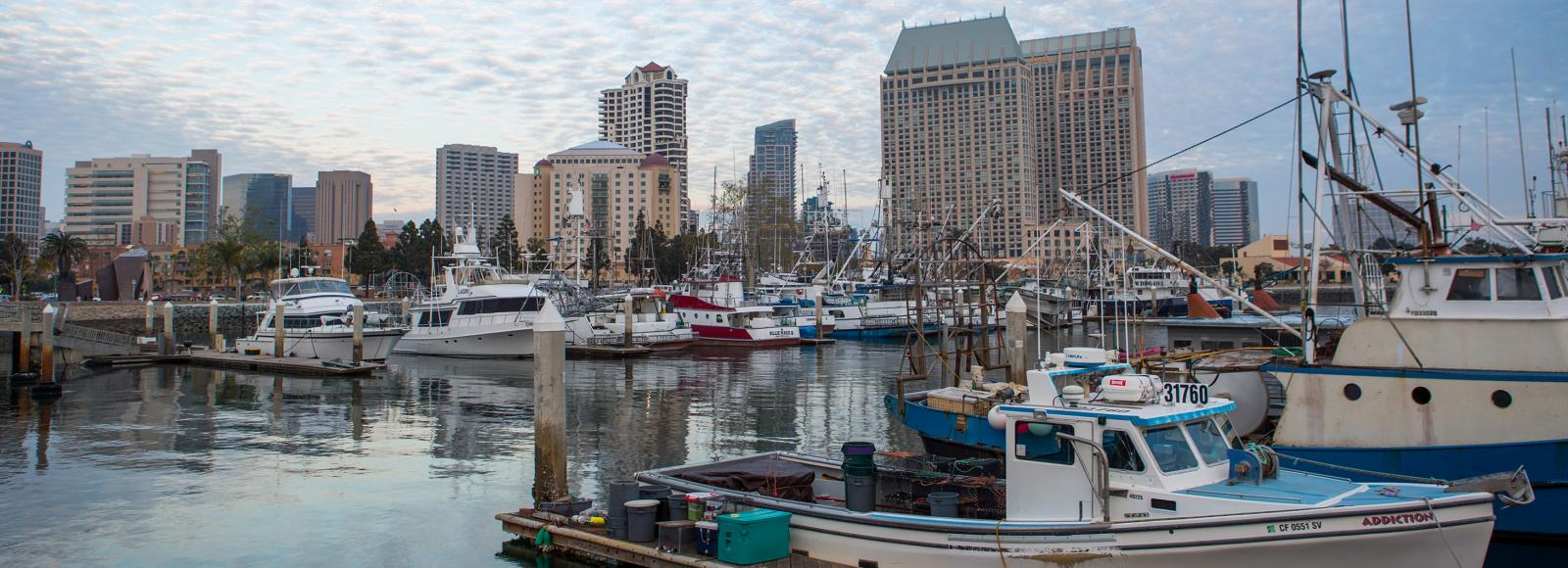 A marina with a dozen boats docked and a cityscape behind it. The blue sky is blanketed with cirrocumulus clouds.