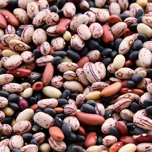 close up image of mixed dried beans