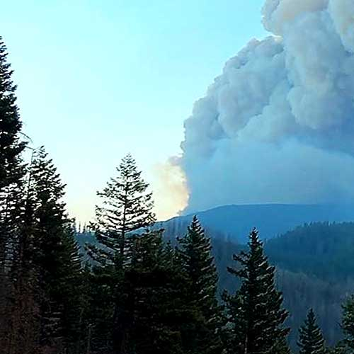 smoke billowing from a forest fire, seen from afar