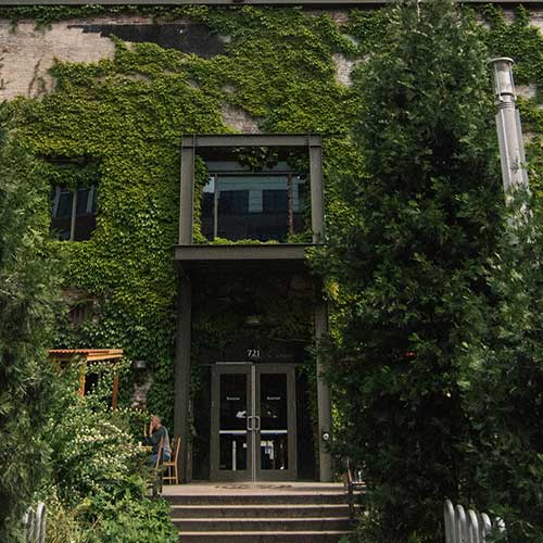 One side of a large building that has vines growing over much of the front of it and shrubs growing on the floor level