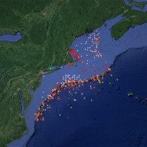 Satellite map of the mid-Atlantic coastline with a heavy distribution of colored dots, representing coldwater coral distribution.
