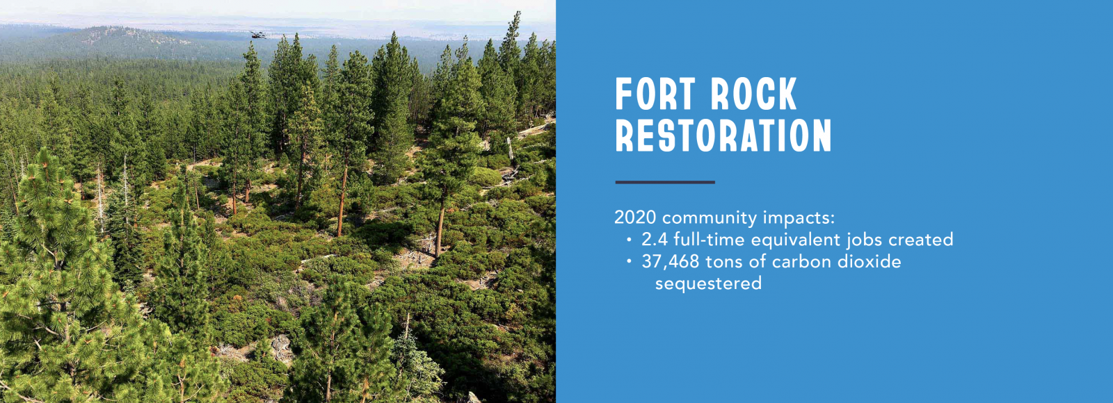 A photo placed next to a graphic of white text over a blue background. The photo shows a pine forest photographed from a high vantage point. The white text on the graphic reads: Fort Rock Restoration: / 2020 community impacts: / 2.4 full-time equivalent jobs created / 37,468 tons of carbon dioxide sequestered