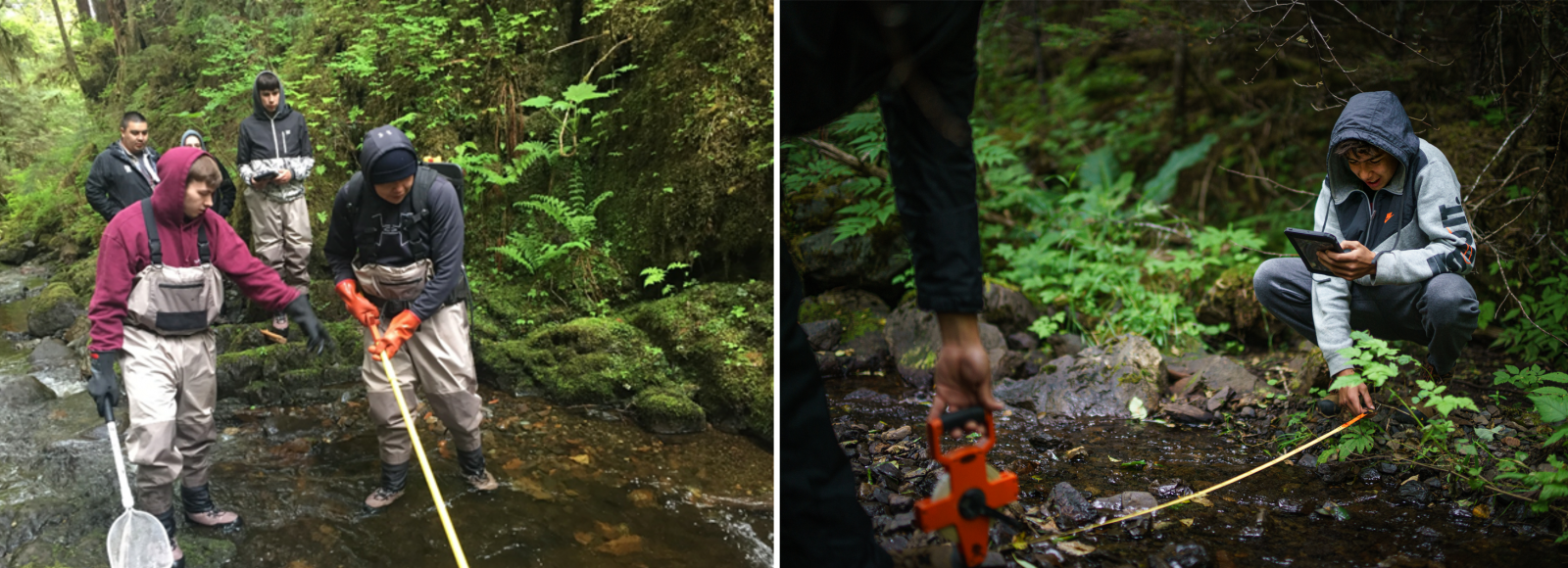 A diptych image. The left side photo shows a handful of young people wearing waders standing in a stream. In the foreground, two male youth carry a net and measuring equipment. In the right side photo, a male youth in a hooded jacket holds the end of a tape measure, while someone not clearly visible in the foreground holds the other end of the tape measurer, across the width of a stream