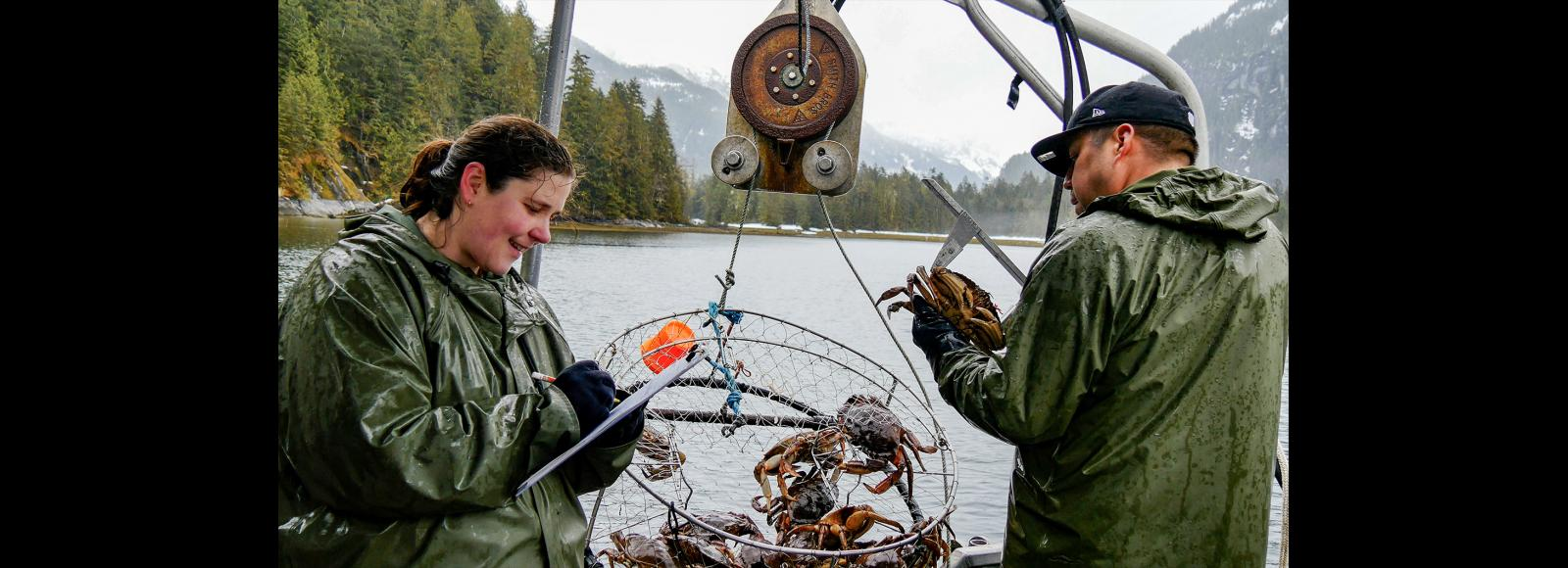 A woman looking down at her clipboard stands facing a man holding a Dungeness crab. A wire trap between them holds a dozen more crabs. They seem to be on a boat, with the lake surface and trees behind them.